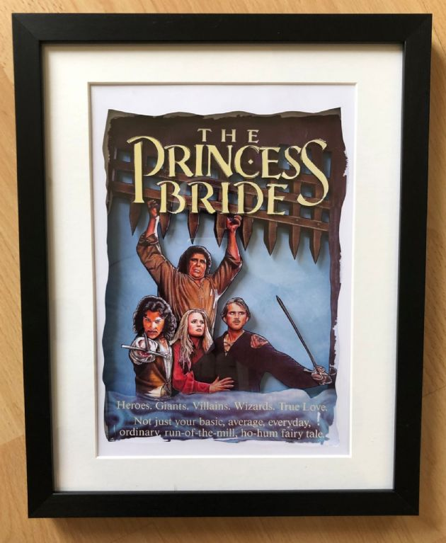 The Princess Bride 3D Diorama Shadow Box